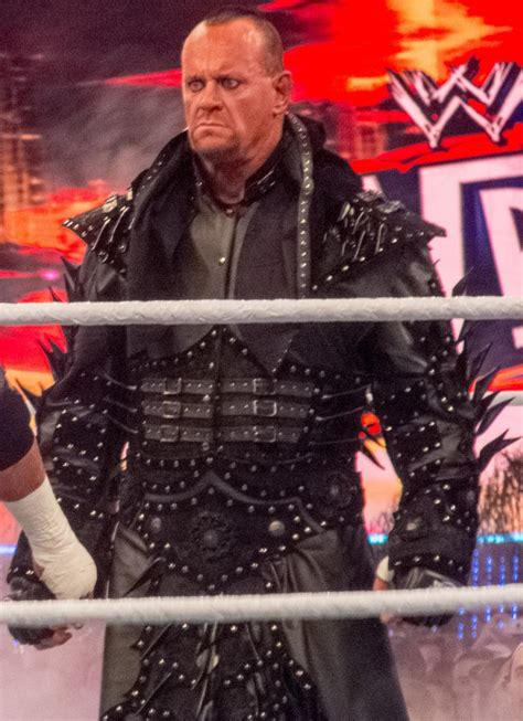 Undertaker WrestleMania 30 Loss: Why Brock Lesnar Was The